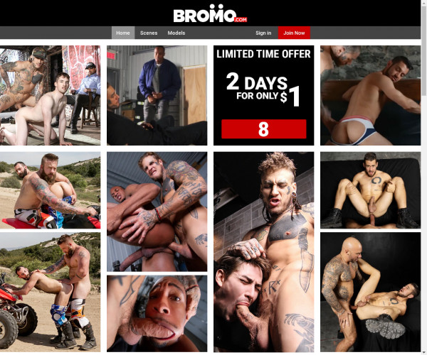 bromo network