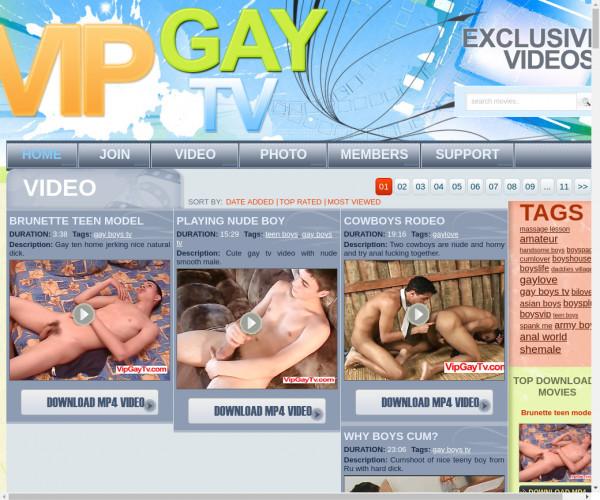vip gay tv